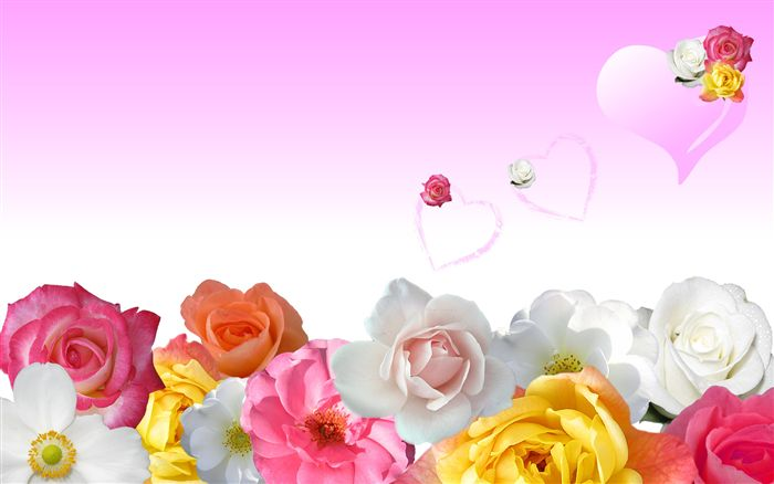 Flower Pink Wallpaper