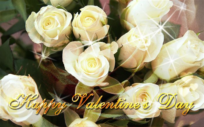 Happy Valentine's Day white roses
