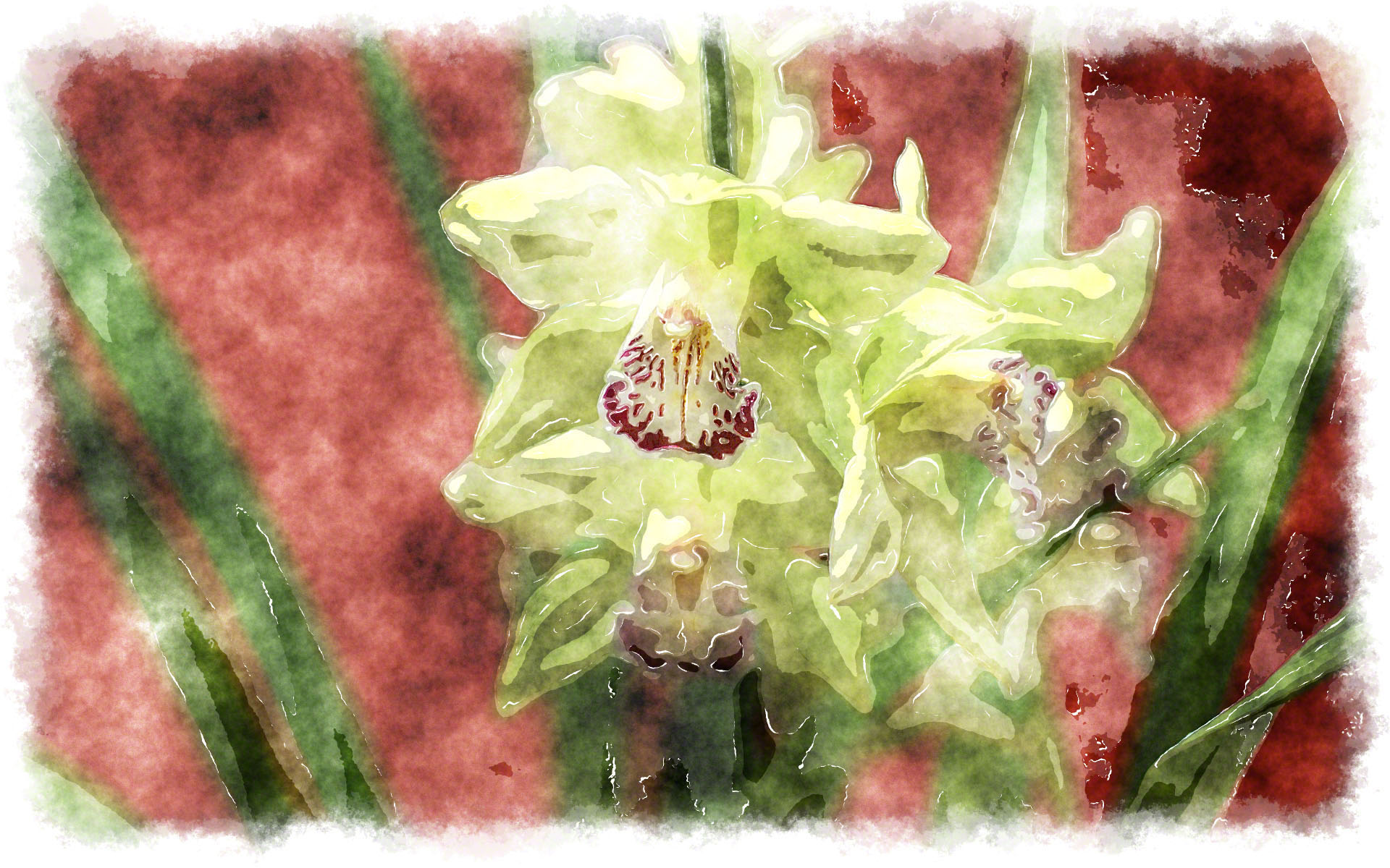 green cymbidium watercolor painting