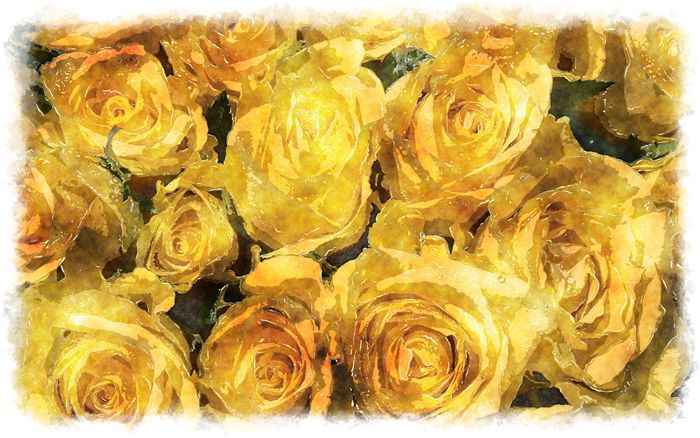 yellow roses bouquet watercolor